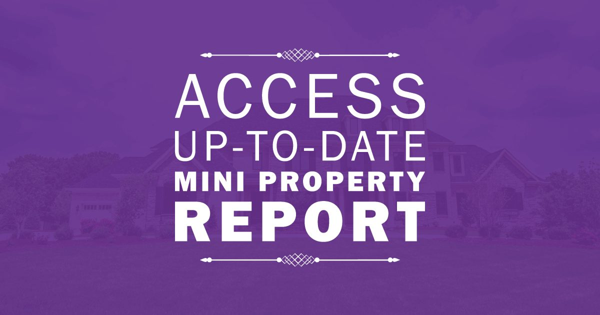Snapshot Property Report
